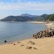 香川県 三豊市の海