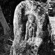 名張市葛尾 八柱神社境内の石