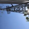 第1,030回板橋ロールコール神奈川県湯河原町星ヶ山中腹(700m前後)2018年5月20日日曜版ですが残念でした!