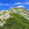 連休を利用して日本で2番目に高い山、南アルプスにある北岳に行ってきました。 伊那市の理容店・床屋 ヘアーサロン オオネダ