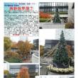 散策 「東京南西部-455」 西新宿界隈⑦ 東京新宿センタービル