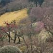 三景園 (2)