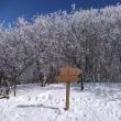 2.やはり「トレクスタ」 Treksta は粗悪品だった 樹氷の三峰山で実感 2017年1月26日