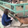 高坂こども動物自然公園