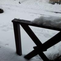 うちの周り雪〜(´×ω×`)
