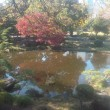 滞在型家庭菜園:日比谷公園