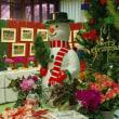 クリスマス展と冬花壇