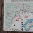 道の駅かわうその里すさき(高知県須崎市)