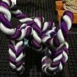 民博の縄と綱