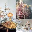 関西地区、粘土のお花(クレイフラワー)の50周年記念展示会、特別販売が開催されます。。。。
