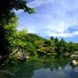 竹林を往く-京都市右京区:天龍寺
