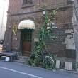 紅梅・白梅&甘酒 《2月の東京散歩その4》