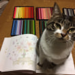 花と猫とどうぶつの物語 花びらスピーカー