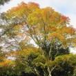 10/19(木)のイキメンニュース~暮らし&身近な法律・判例の情報