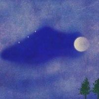 昨夜久しぶりの夜歩き(一万歩達成\(^o^)/)雲間から丸い月が時々見える