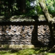第3回 戦国武将を偲ぶ旅②  彦根城と龍潭寺