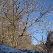 冬を迎え 地域の活動も一区切り