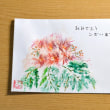Greeting Card   ネムの花 (水彩画)