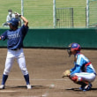2018年 東京新大学野球連盟・春季リーグ戦