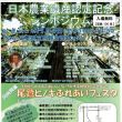 尾鷲の石垣(賀田町NO14)と今朝の賀田湾