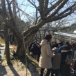 神社巡り② 2017/2/19