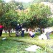 【関西中国】柚子狩り