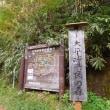 夏焼山から大平峠へ(3)