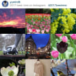 2017 best 9 on Instagram.
