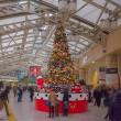 2017.12.22 上野駅 グランドコンコース: もうすぐクリスマス!