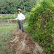 農園で午後から一仕事(2017/10/17)