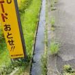 用水路側草刈りの残骸は回収