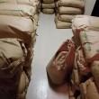 玄米販売のお知らせ