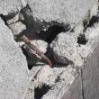 地震対策でできる事!静岡市 地震被害対策を考えるアイ・ディー・スリーの池田建設
