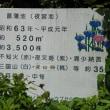 夜宮公園菖蒲池 180526