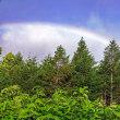 霧雨の中 太陽陽ざし 輝く虹