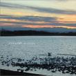 魅了される多々良沼の夕景