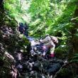 伊吹山(1377m)(上平寺からピストン)~歴史を秘めた林間コースから開放的な正面登山道へ~