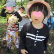 2018年4月26日(木)の【写真館】