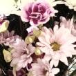 【季節のキャンペーン】特典付き春のキャンペーン/3月31まで!