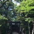 六本木ランチから赤坂氷川神社