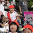 夏花チャンの運動会を見に行く。