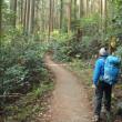 茨城県 筑波山の男体山と女体山をウォーキング(4/4)