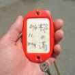 岳の湯 白地商店の蒸鶏定食1000円