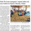 ミャンマー産の「セインタロン・マンゴー」の輸出。毎日10トン!