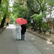 宇治上神社・結婚式
