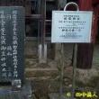 山城町椿井・松尾神社の民俗探訪