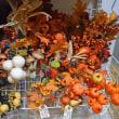 東京堂ハロウィン商品・一部紅葉リーフの展示始めました