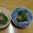 自然の恵み山菜 クレソンとヤチハコベ 動画~