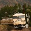 117系・T1(団体臨時列車)