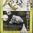 三井記念美術館 『驚異の超絶技巧! -明治工芸から現代アートへ-』